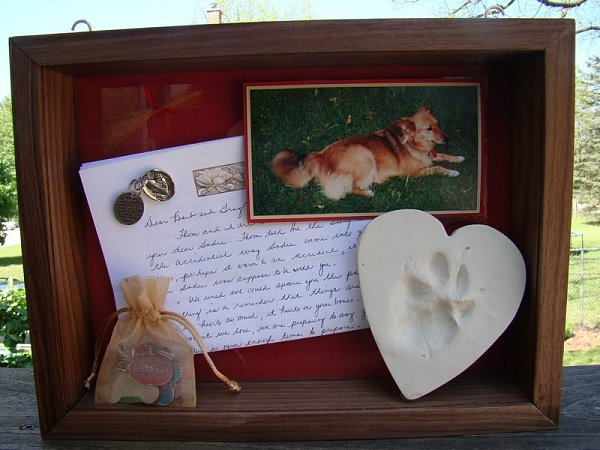 The Dos And Don Ts Of Pet Memorials Cpc Cares Blog