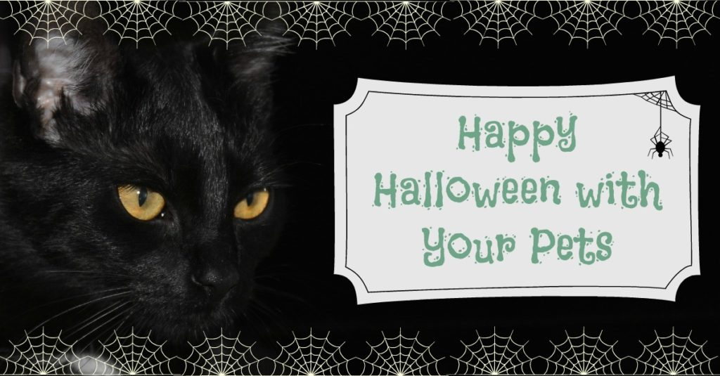 Happy Halloween With Your Pets - Petrest