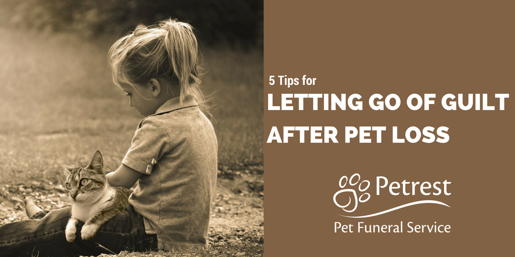 Letting Go of Guilt After Pet Loss - Petrest