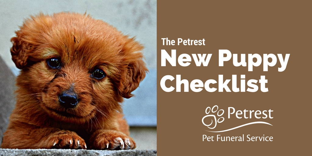 New Puppy Checklist - Petrest