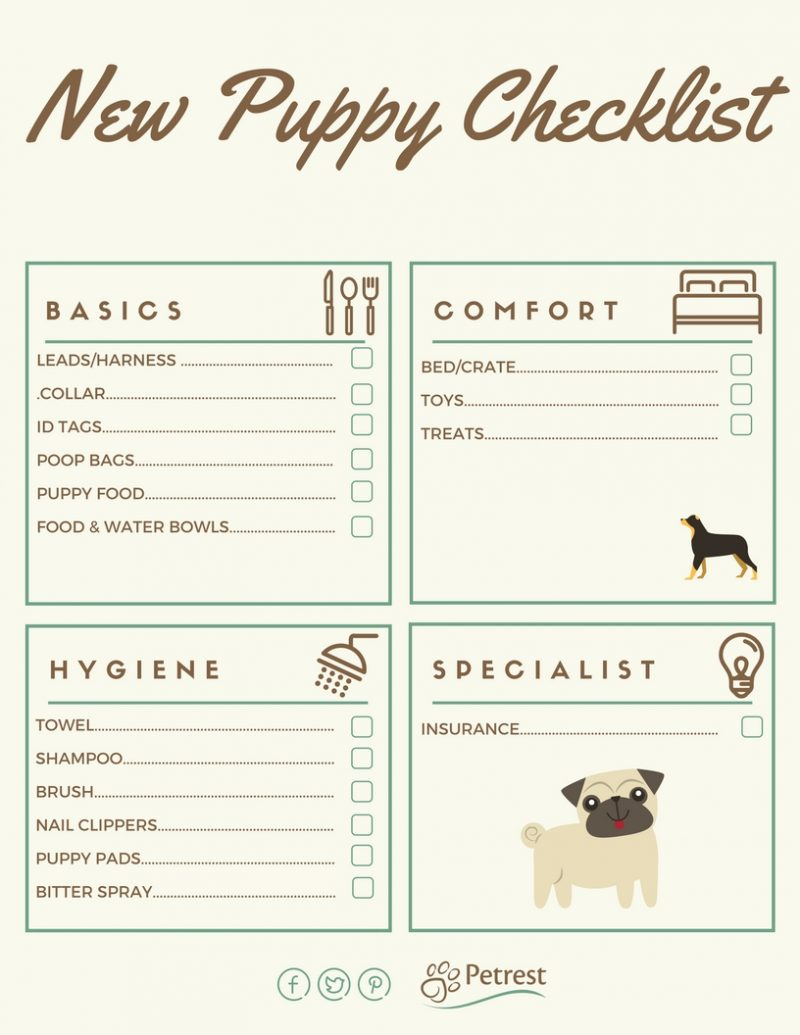 New Puppy Checklist Tips For Owning Young Dogs