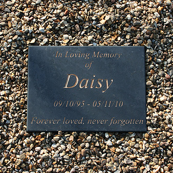 Polished Welsh Slate Pet Memorial
