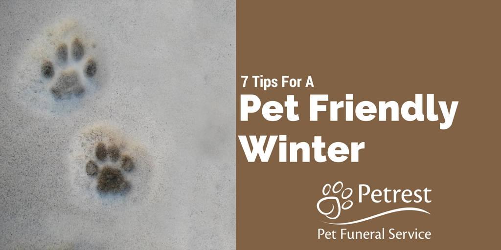 7 Winter Pet Tips - Petrest