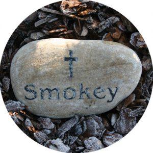 Pet Memorial Elstree Wooden Casket With Brass Pawprints