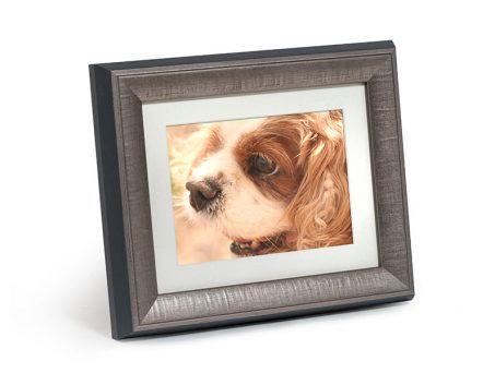 Keep Your Pet S Ashes In A Discreet Ashes Pet Tribute Frame