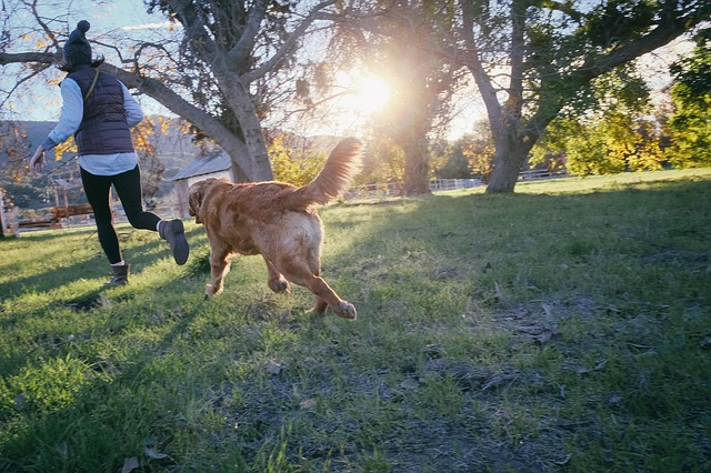 Pets Improve our Physical and Emotional Health