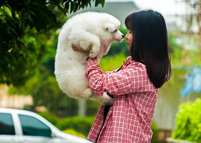 Owner and pet dog rubbing noses