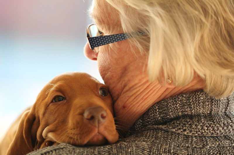 grieving pet parent - A lady holding her puppy