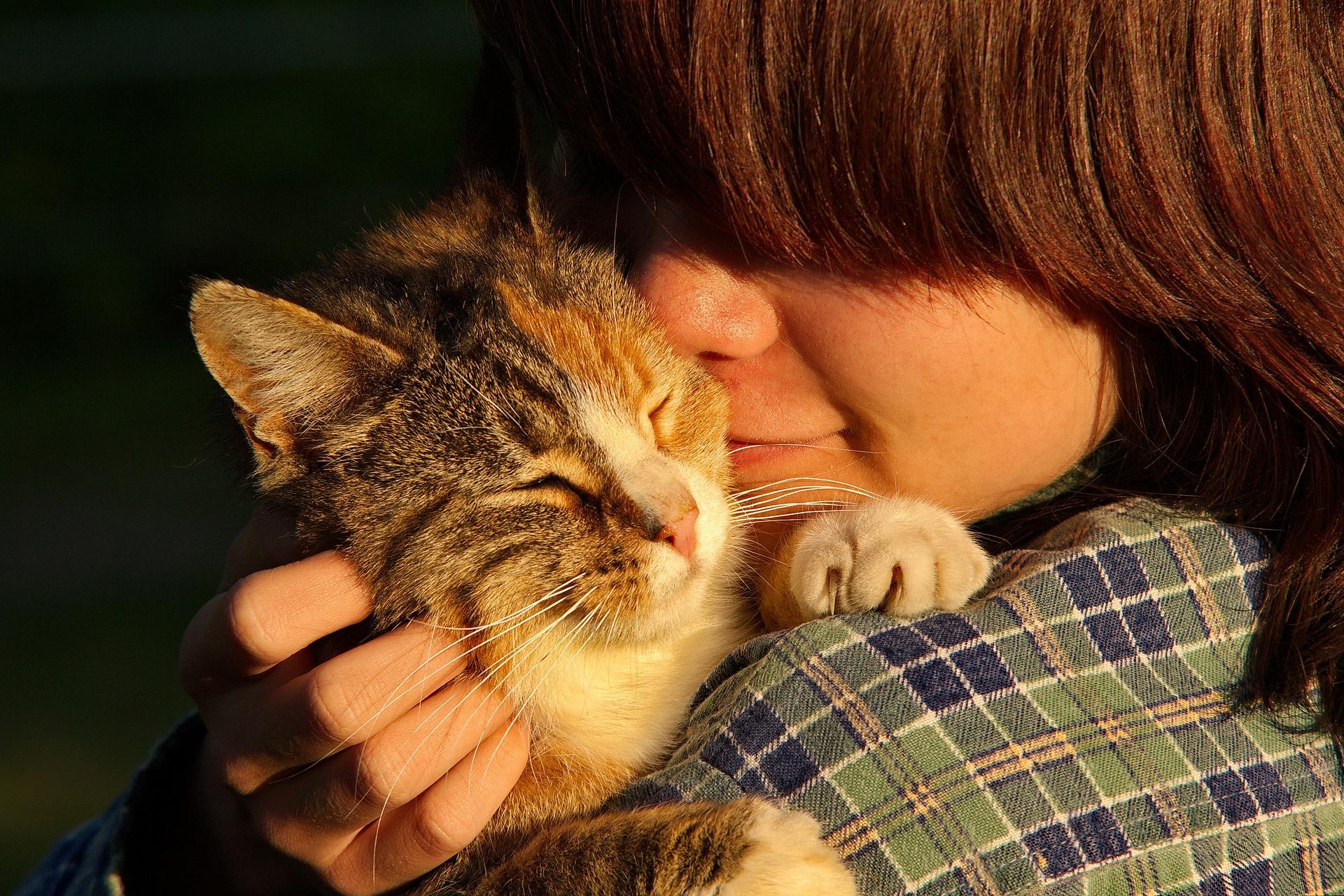 fall in pet ownership