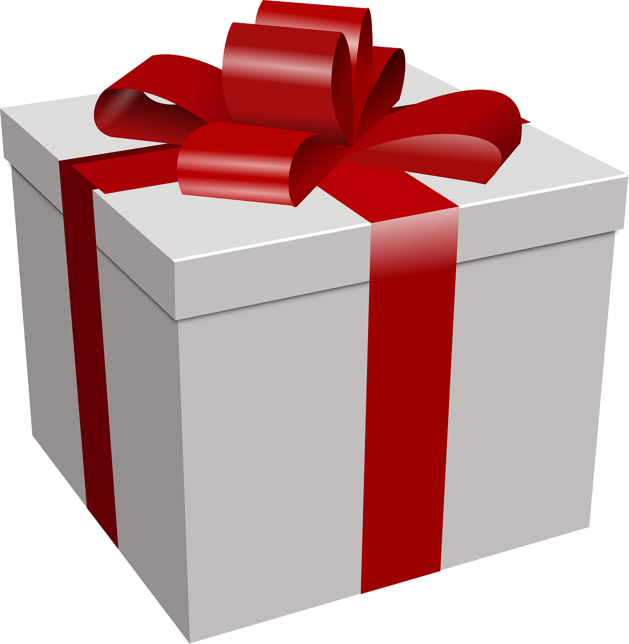 pets are for life and not just for Christmas - present box
