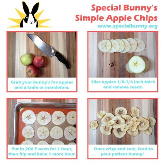 treats for your pet rabbit - Apple Chips