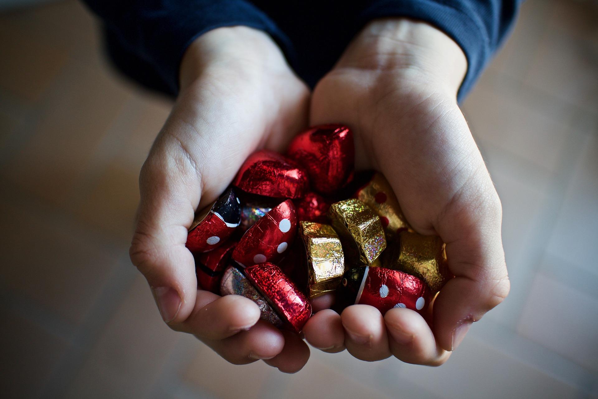 chocolate harms dogs