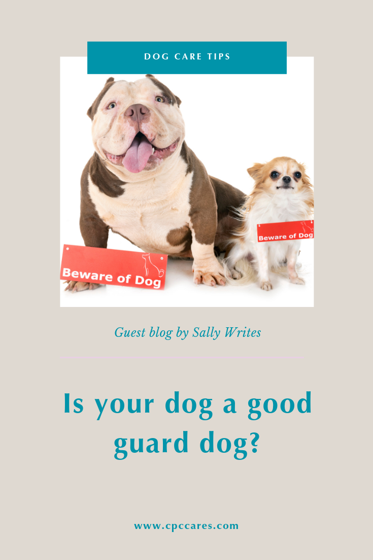 Is your dog a good guard dog