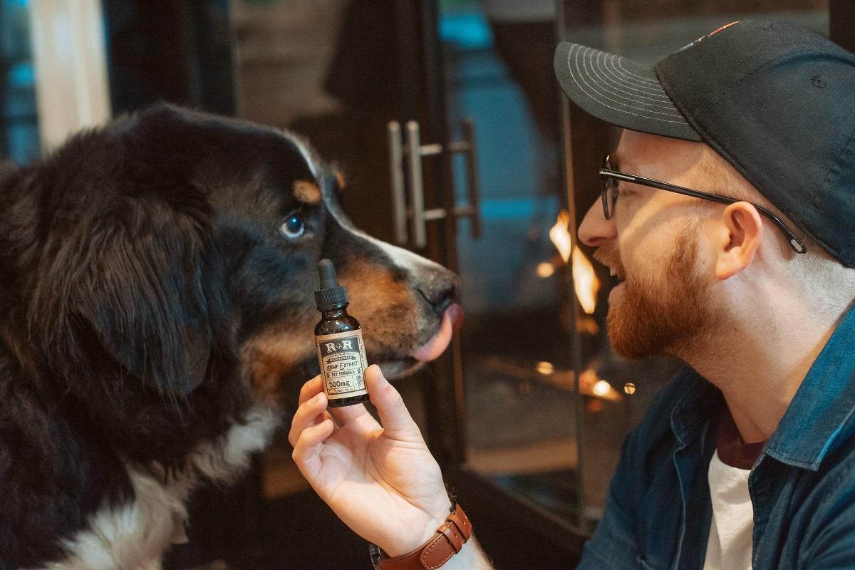 Man showing dog CBD oil