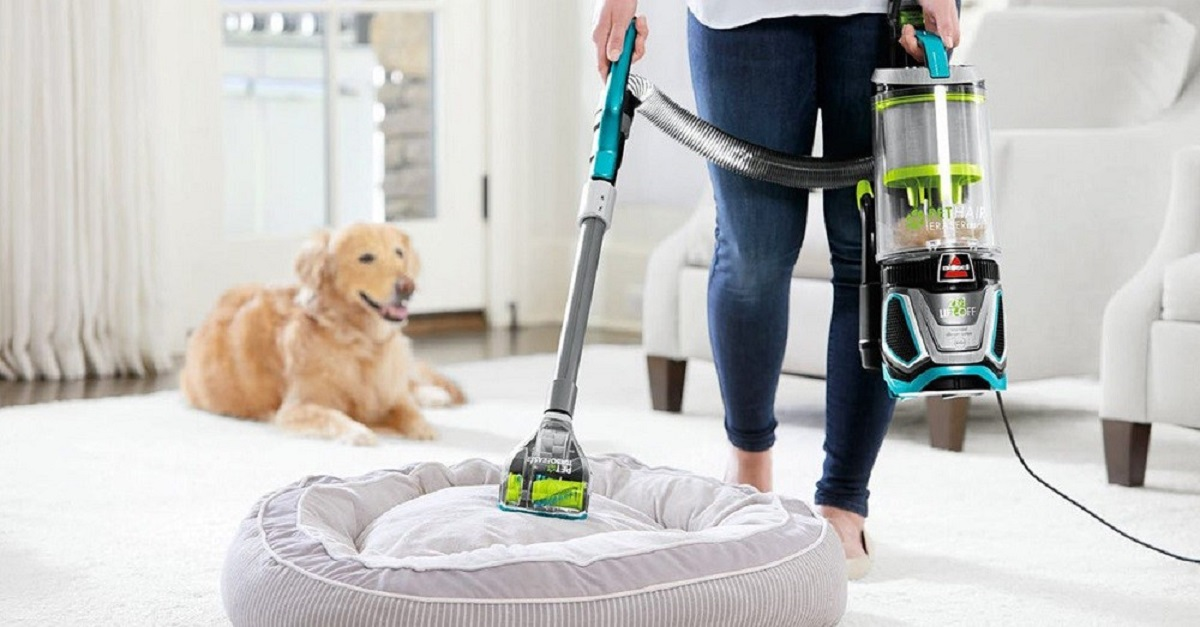 cleaning the dog's bed