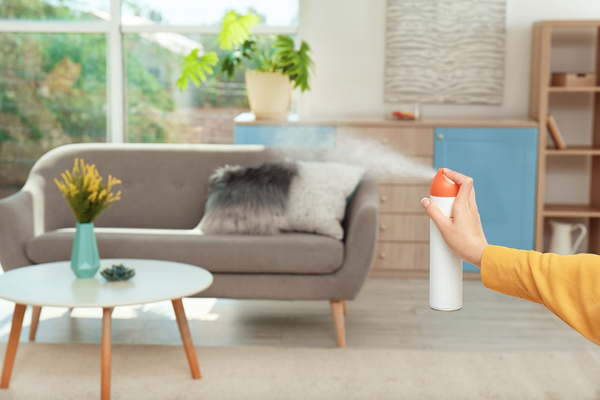 deodorize your house