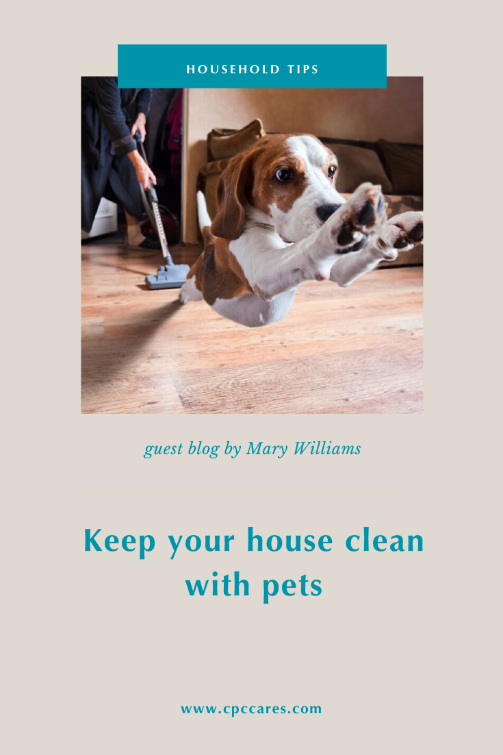keeping your house free of pet hair