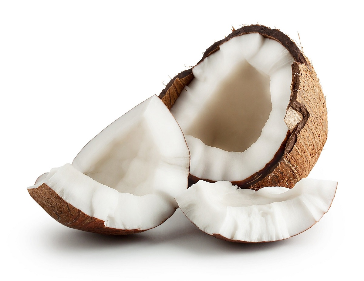 coconut dog treat