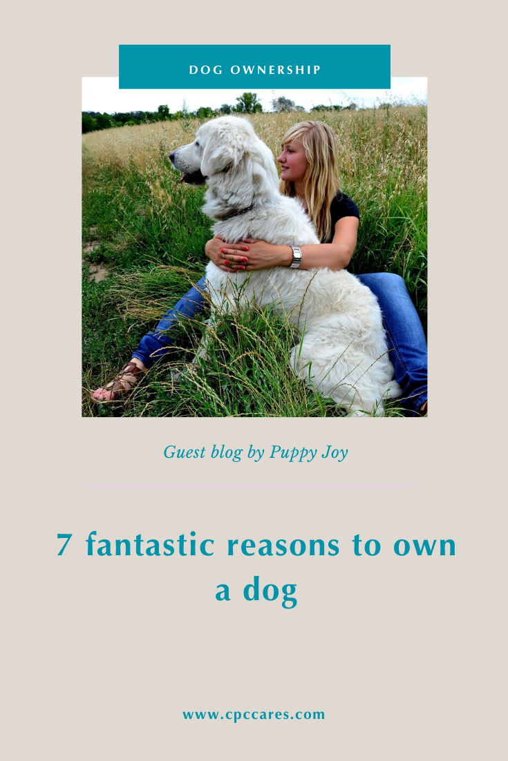 7 reasons to own a dog