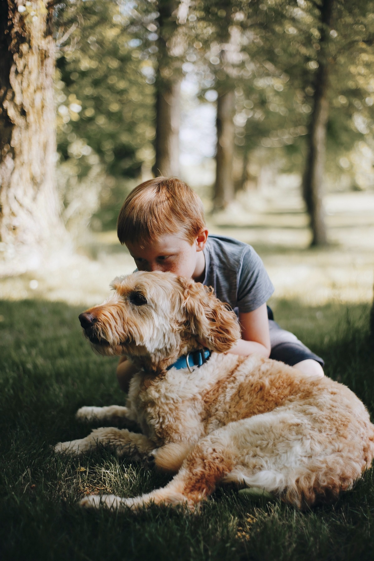 Dogs Help Children With Autism