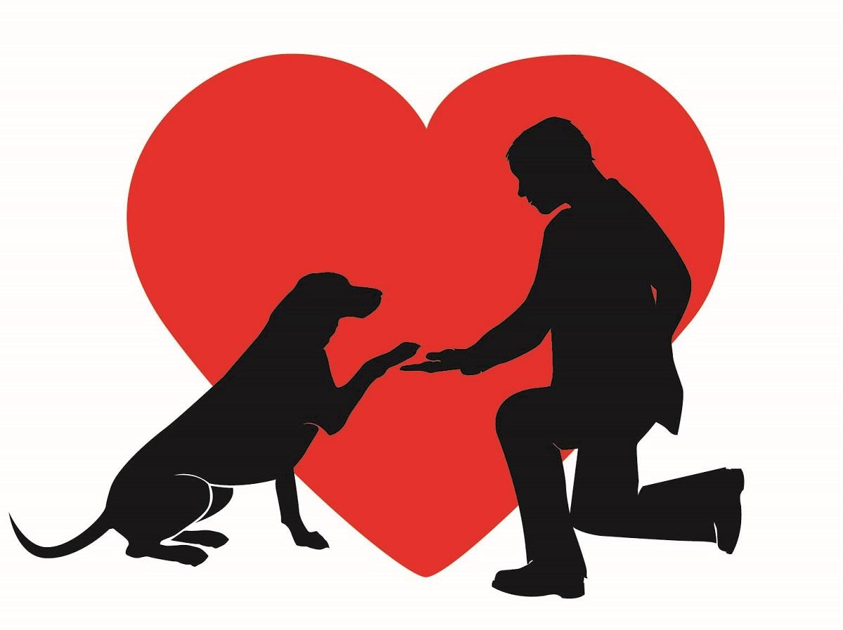 Treat your pet this Valentine's
